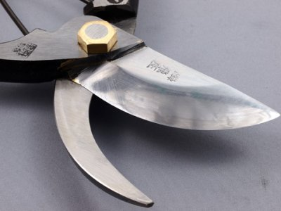 Photo1: [Tobisho] Pruners New A-type (200mm edge / Blue paper steel, Aogami)