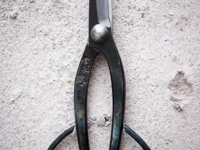 Photo3: [KISUKE] Trimming shears for Bonsai (Long handle)